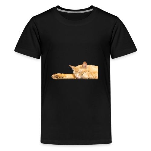 Cat Nap - Kids' Premium T-Shirt