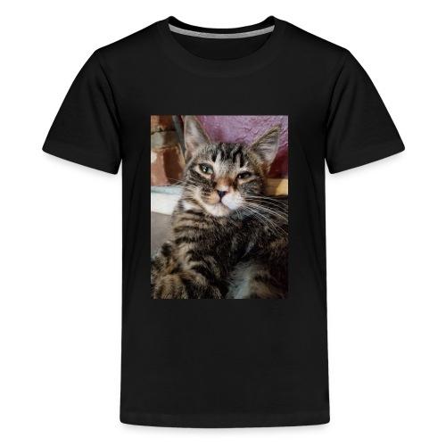 Eli the fat brown tabby - Kids' Premium T-Shirt