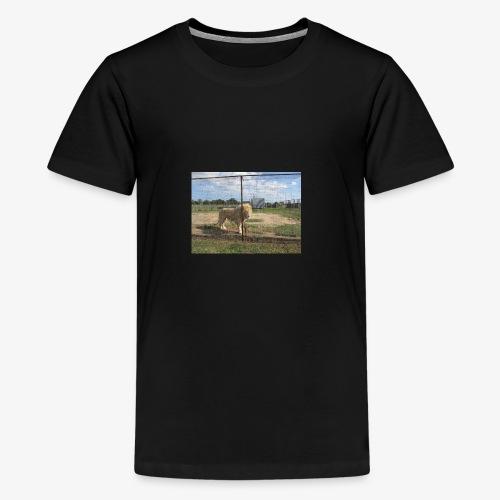 IMG 7902 - Kids' Premium T-Shirt