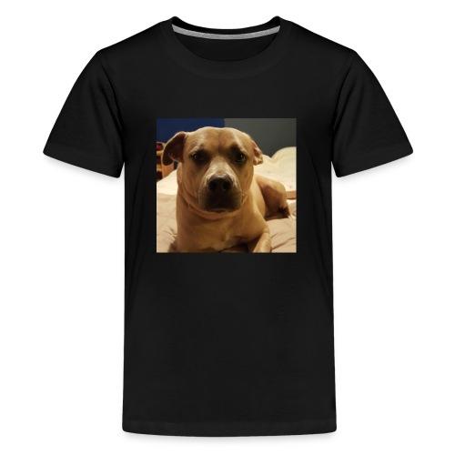 Linus1 - Kids' Premium T-Shirt