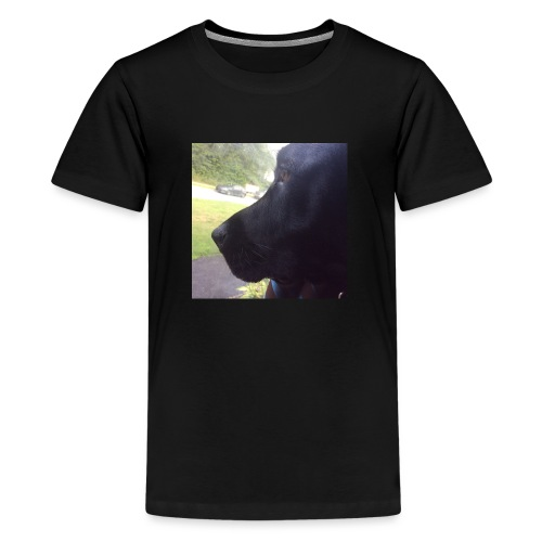 Casey And The Window - Kids' Premium T-Shirt