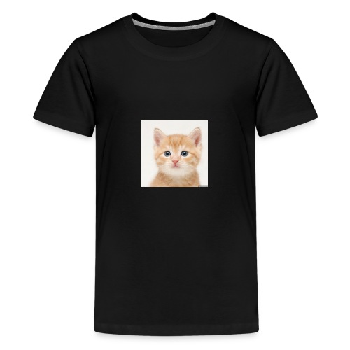the great cute cat shirt - Kids' Premium T-Shirt