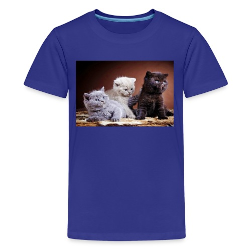 The 3 little kittens - Kids' Premium T-Shirt