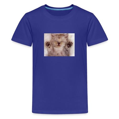Cute Kitten kittens 12928538 800 600 - Kids' Premium T-Shirt