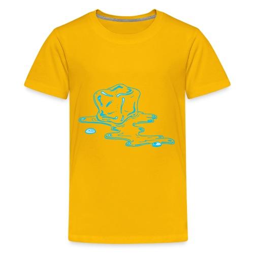 Ice melts - Kids' Premium T-Shirt