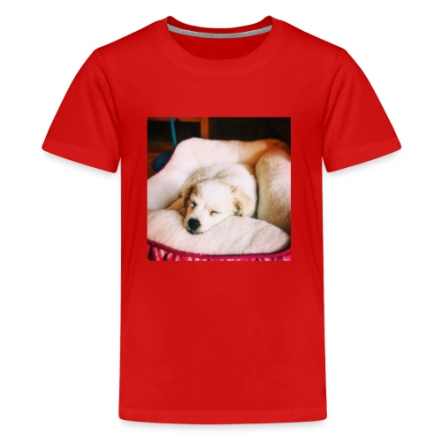 Sleeping Puppy Luma - Kids' Premium T-Shirt