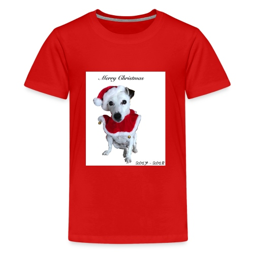 Merry Christmas 2017-2018 [LIMITED EDITION] - Kids' Premium T-Shirt