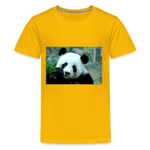 Panda lovers - Kids' Premium T-Shirt