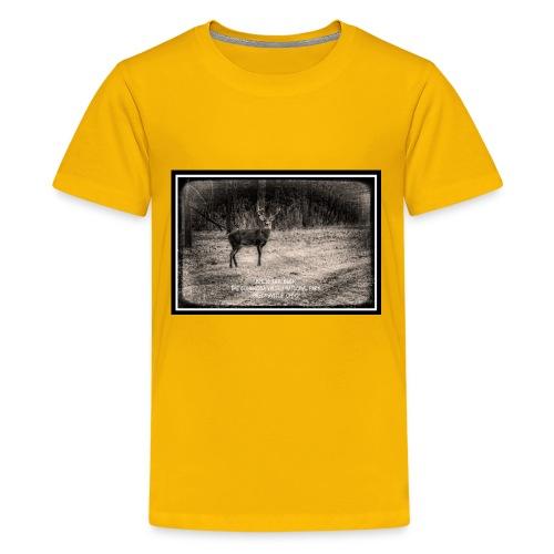 091018 1 2 - Kids' Premium T-Shirt