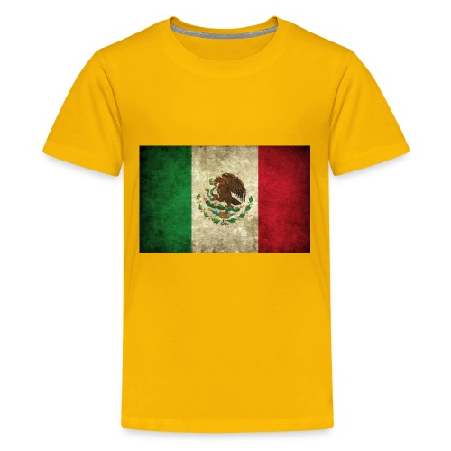 Mexico flag t-shirts etc - Kids' Premium T-Shirt