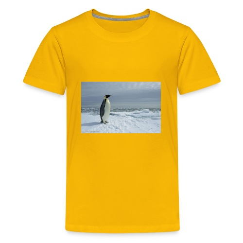 pingnong - Kids' Premium T-Shirt