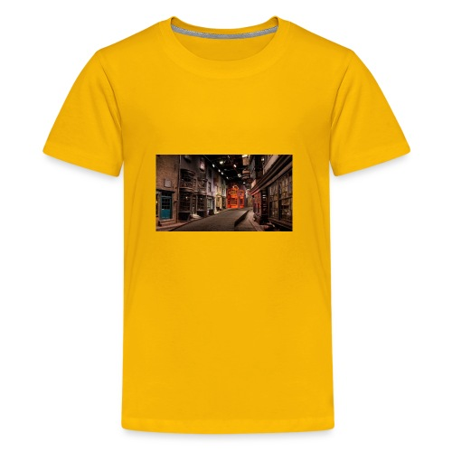 2013 2F07 2F04 2F2f 2FDiagonAlley 2fb68 - Kids' Premium T-Shirt