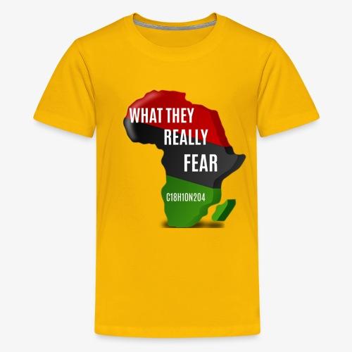 Melanin Formula - Kids' Premium T-Shirt