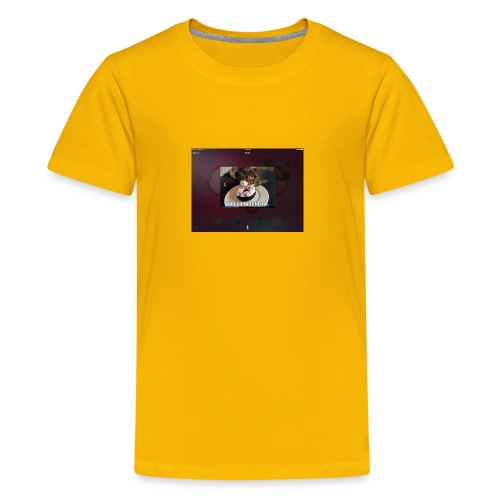 Donuts cat - Kids' Premium T-Shirt