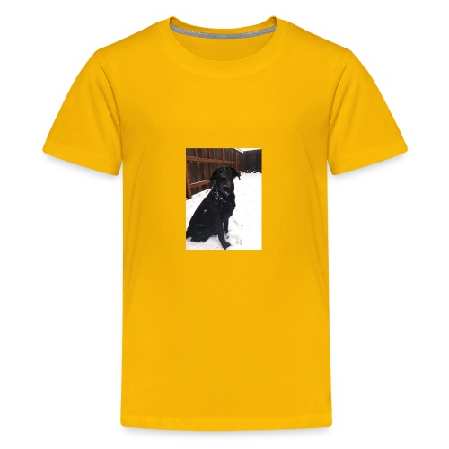 dog2 - Kids' Premium T-Shirt