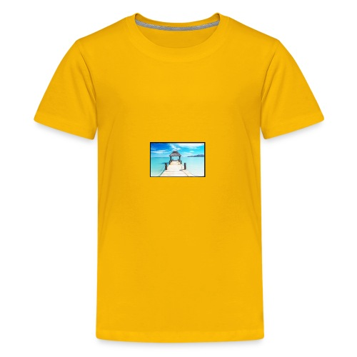 Screenshot 2017 11 12 at 10 08 26 AM - Kids' Premium T-Shirt