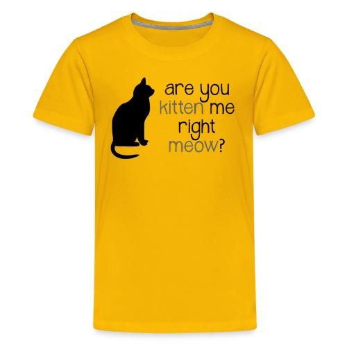 Right Meow by Danielle R - Kids' Premium T-Shirt