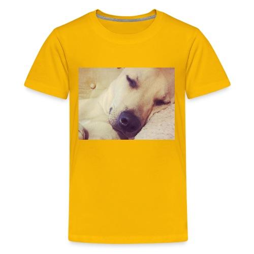 Custom chase design - Kids' Premium T-Shirt