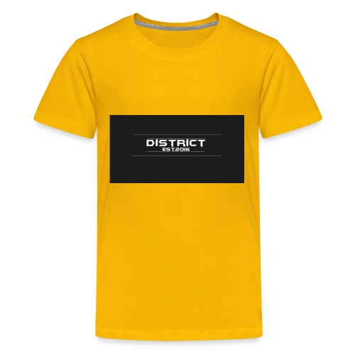 District apparel - Kids' Premium T-Shirt