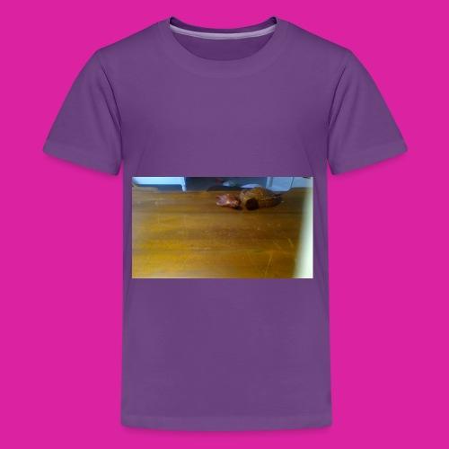 Turtle Family - Kids' Premium T-Shirt