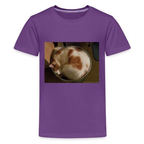 Cat sleeping t shirt - Kids' Premium T-Shirt