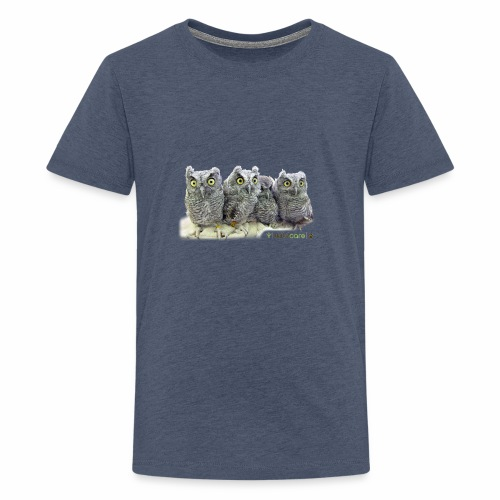 Five Western Screech Owls at WildCare - Kids' Premium T-Shirt
