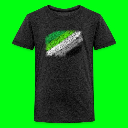 Aromantic Flag - Kids' Premium T-Shirt
