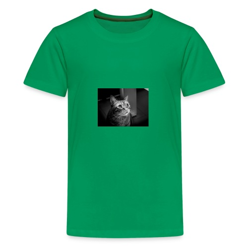27144721150 c95db364a9 z - Kids' Premium T-Shirt