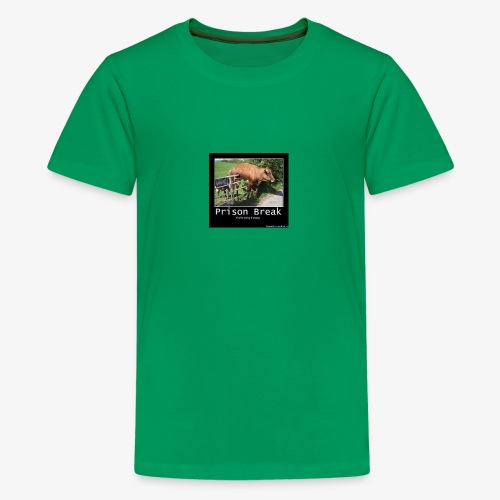 13781980 716246028514413 2277844027986249923 n - Kids' Premium T-Shirt