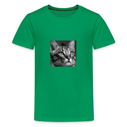 Lindsey Epic - Kids' Premium T-Shirt