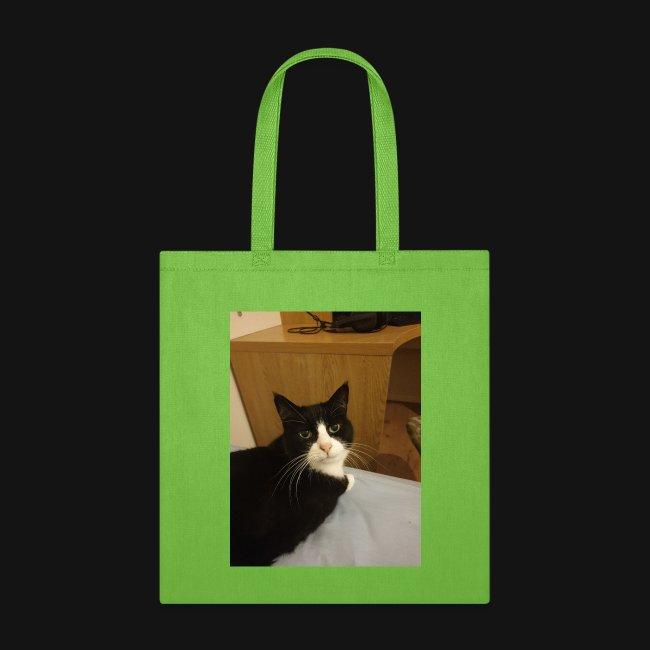 Gamer Cat 1