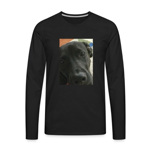 Lab - Men's Premium Long Sleeve T-Shirt