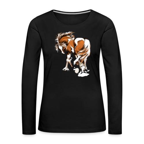 Paints and Paints.... - Women's Premium Long Sleeve T-Shirt