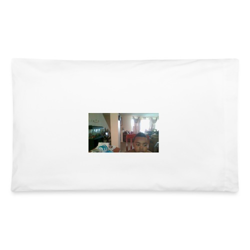 WIN 20160225 08 10 32 Pro - Pillowcase 32'' x 20''