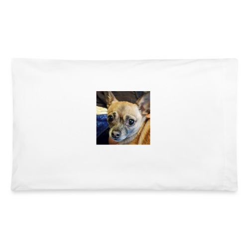 Pablo - Pillowcase 32'' x 20''