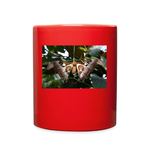 Atlas - Full Color Mug