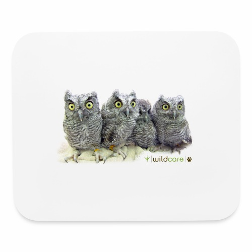 Five Western Screech Owls at WildCare - Mouse pad Horizontal