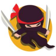The Tee Shirt Ninja