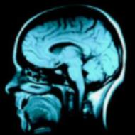 innercoma
