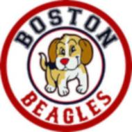 BostonBeagles